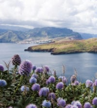 madeiraisland_beautifull1