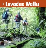 Levadas Walks