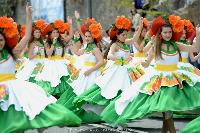 Pictures From Madeira Flower Festival 30