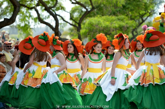 Pictures From Madeira Flower Festival 33