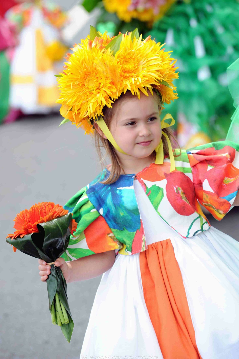 Pictures From Madeira Flower Festival 46