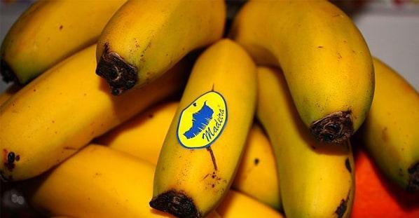 bananamadeira