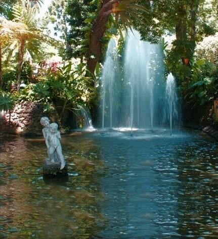 Funchal Municipal Garden 1