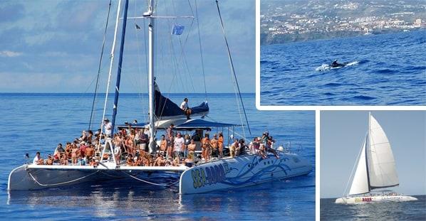 Madeira catamaran