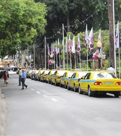 Taxis Madeira Islands - Most do excursions throughout the island 1