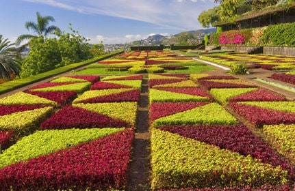 Hotels in Madeira Island - Things to do in madeira 2