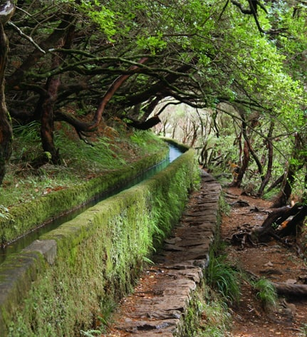 The north of Madeira Island 7