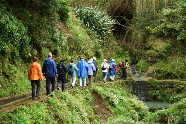 Levadas Walks Madeira Prices Madeira Holidays Tourism