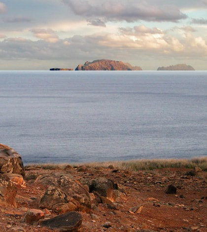 Desertas islands Madeira declared a protected area 1
