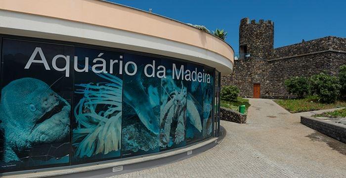 porto moniz aquarium